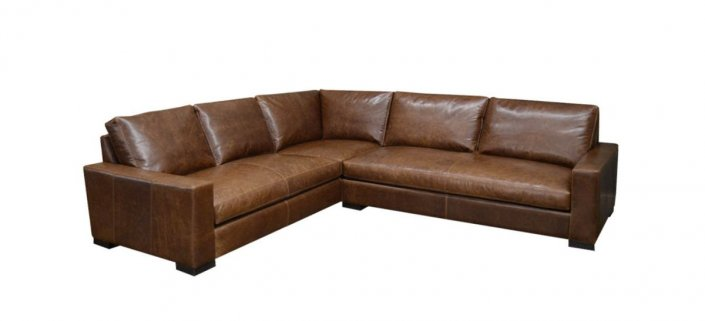 Dante Leather Sectional